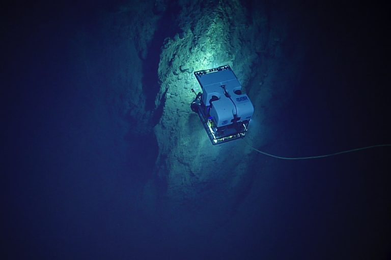 D2 on a rock wall. Credit: NOAA OER