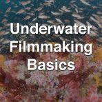 Underwater Filmmaking Basics